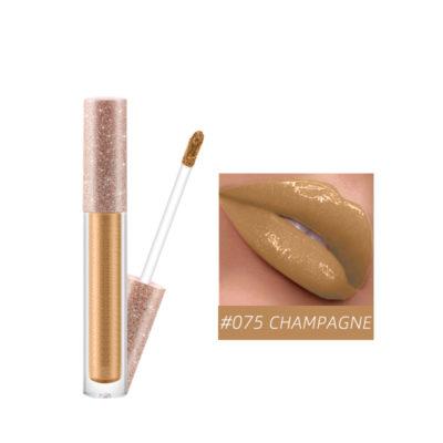 CHAMPAGNE LIP GLOSS,QBEKA Lip Gloss,lipstick,lip glaze,makeup